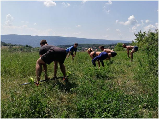 fyzio-fitness-kurzy-motor-pohybu